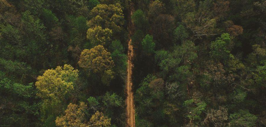 Drones para uso medio ambiental y forestal